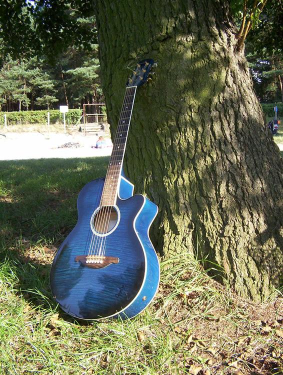01 Die Gitarre