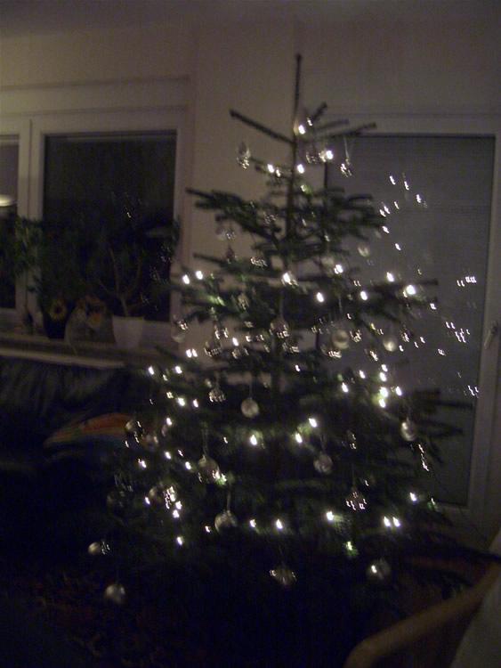 03 Weihnachtsbaum im Dunkeln