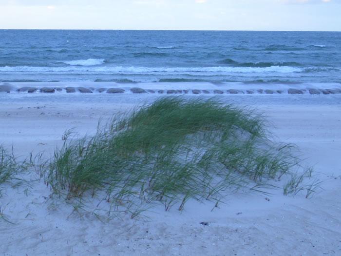 dünen am strand1